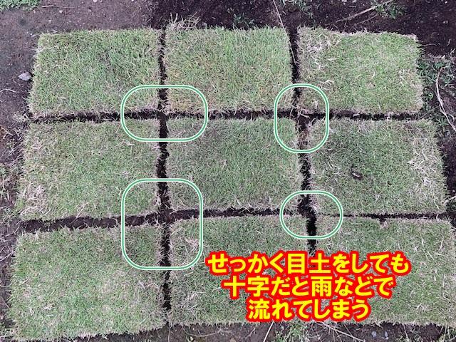 芝生張り方 目地張り